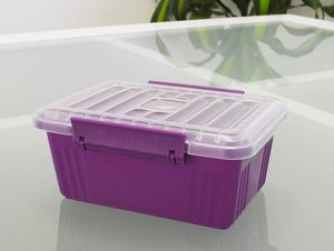 600ml container with snap on lid