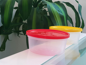 350 ml Plastic Tubs with Lids