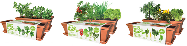 Sill planters and planter trays