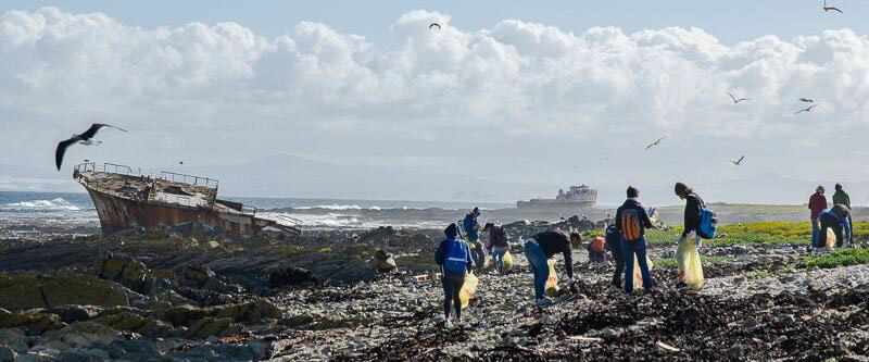 Beach Cleanup at Robben Island